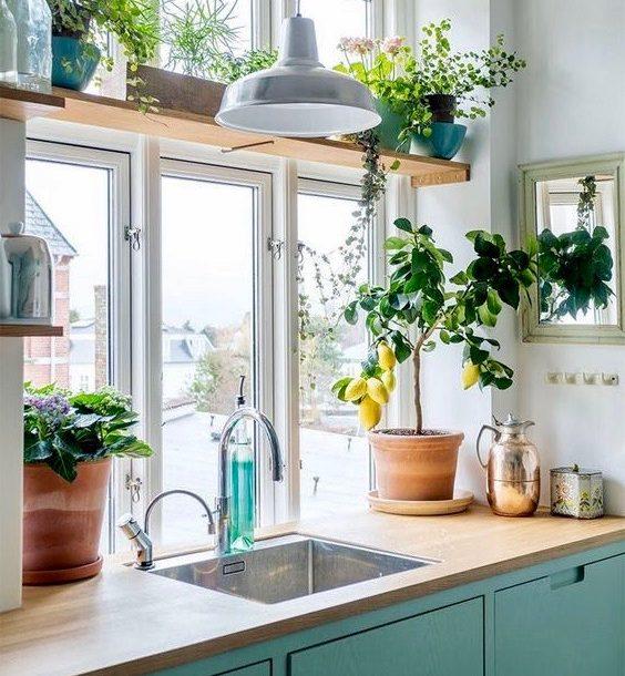 Einfach einen sinnlichen Küchen Kräutergarten anlegen Ku  chen Garten anpflanzen 2 564x610