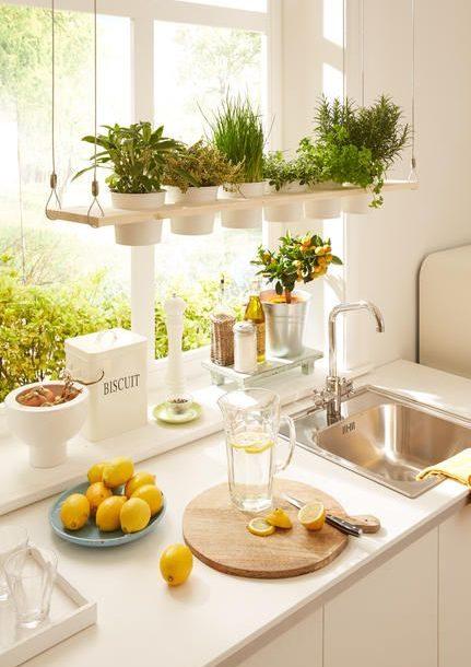 Wohninspiration – mit eigenen Kräutern, Obst und Gemüse KitchenGardenWindow 431x610