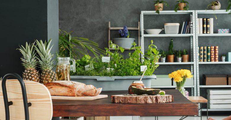 Kräutergarten Für Die Küche | Den Eigenen Krautergarten Anlegen In Der Kuche